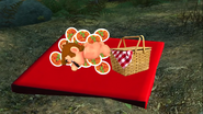 Mario's Big Chungus Hunt 012