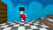SMG4 Mario's Late! 033