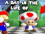 A day in the life of TOAD