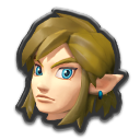 Link Botw icona DX