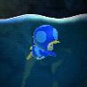Toad Blu Pinguino
