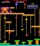 Livello 1 Screenshot - Donkey Kong Jr.