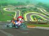 Circuito di Mario