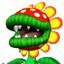 Petey-MKWii-Icon