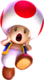 Toad LM2