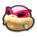 Roy Icona - Mario Kart 8