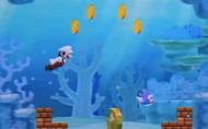 Screen NSMB2 Pesce Smack Spinato