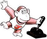Donkey Kong Jr. - DK (GB)