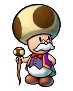Mastro Toad
