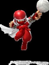 Ninja MSM