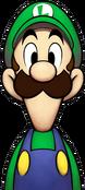 MLSSSDB-Luigi-n1