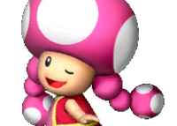 Toadette3MP8