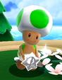 Toad custode