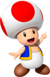 Toad NKC