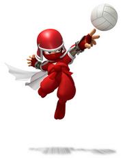 220px-Ninjasportsmix