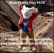 Stuartlittlefact