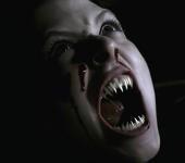 MP Content Vampires