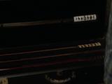 Gabriel's Swords