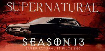 Risultati immagini per supernatural 13