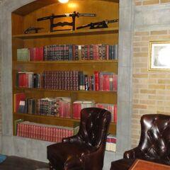 Книжный шкаф и коллекционное оружие