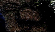 Anasaziwendigo