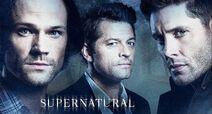 Season 15 Promotional Poster