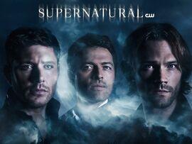 Season 14 Promotional Poster