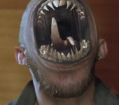 MP Content Leviathans