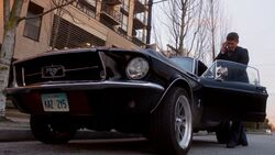 Alternate Universe (My Heart Will Go On) Ford Mustang