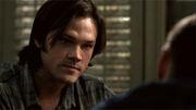 Beautiful-Sam