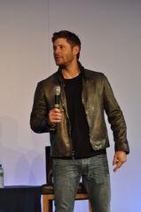 Jensen Asylum6