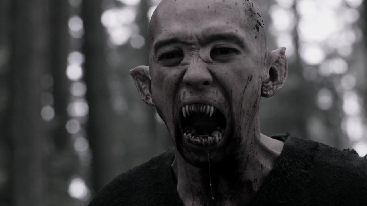 Vampire Videos