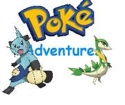 Poke adventures