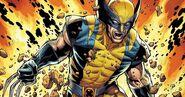 Retração de Garras Wolverine