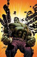 250px-Incredible Hulk Vol 3 1 Adams Variant Textless