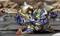 Ryujinki (Alpha 2)