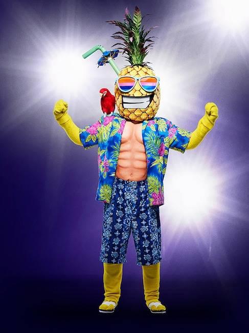 Pineapple Mask (The Ma...