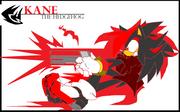 Kane the hedgehog poster by zhenghwang-d3dhl7s