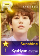 Sunshine Kyuhyun R r