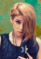 RL Amber