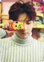 P Ryeowook D