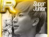 Super Junior Theme Cards