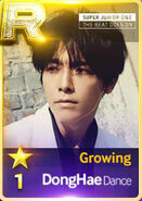 Donghae D Growing R