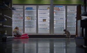 S04E12-Justine raccoon