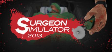 surgery simulator 2013