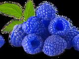 Blue Raspburres