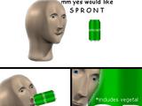 S P R O O T