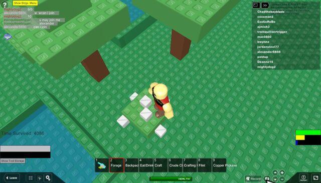 File:RobloxScreenShot06222011 132748617.jpg