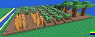 Survival 404 Plantation