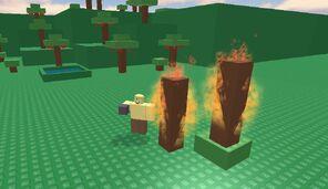 Survival 404 Fire
